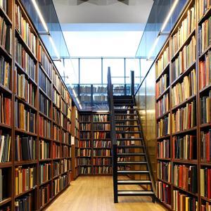 Библиотеки Льгова