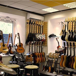 Музыкальные магазины Льгова