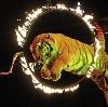 Цирки в Льгове